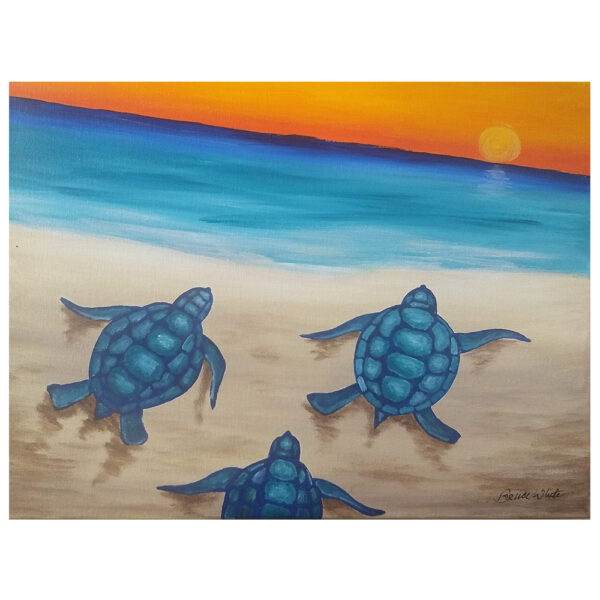 Sea Turtles Pre-drawn Canvas
