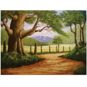 """Old Road 12"""" x 16"""""""